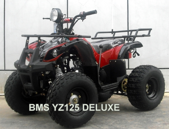 125cc Youth ATV - All the best of the best!